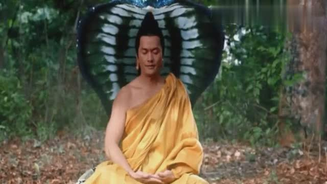 谁知道有哪位佛陀的坐骑是蛇么?