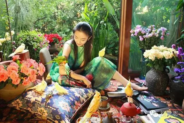 杨丽萍洱海房子