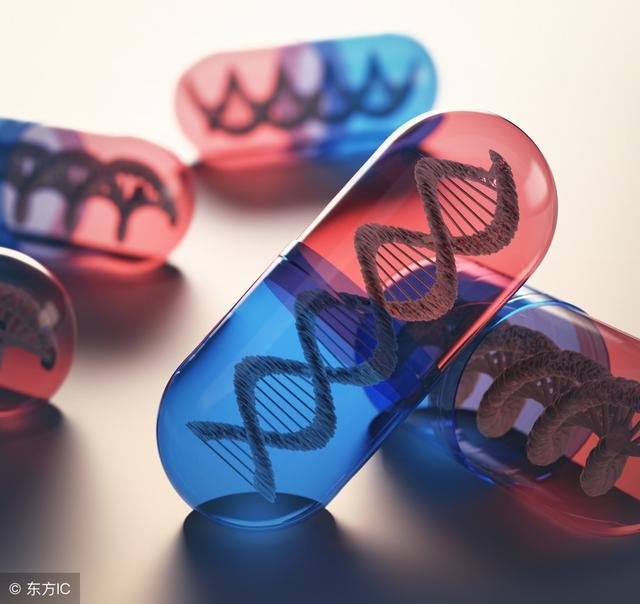 基因19突變是什么意思