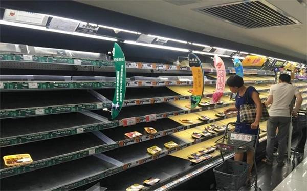 湛江防台风