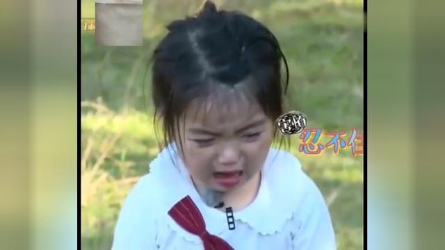 《爸爸去哪4》一大波可爱软萌的阿拉蕾GIF表情包来袭