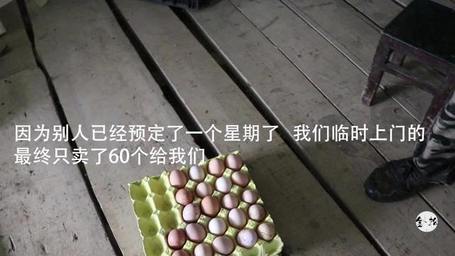 正宗贵州土鸡蛋,让东哥流口水!