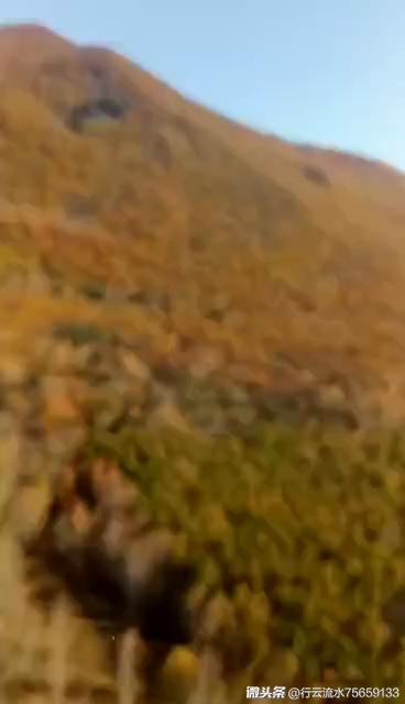 伊春市旅游-黑龙江省伊春市景点大全