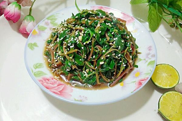 凉拌野菜-马齿苋怎么做_凉拌野菜-马齿苋的做法_豆果美食