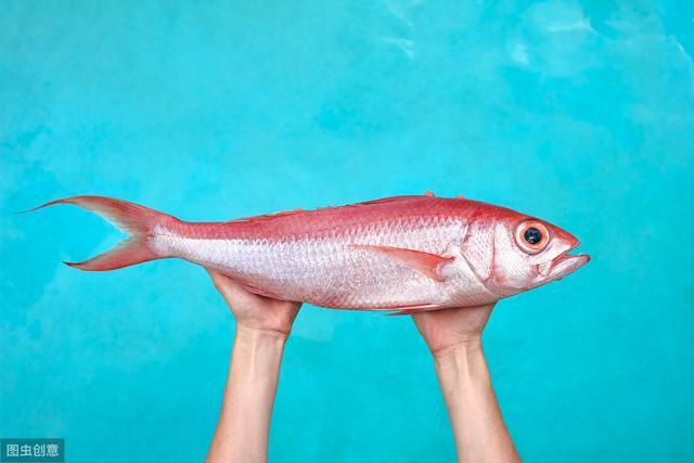 新关东0.1的鱼钩适合钓多大的鱼?