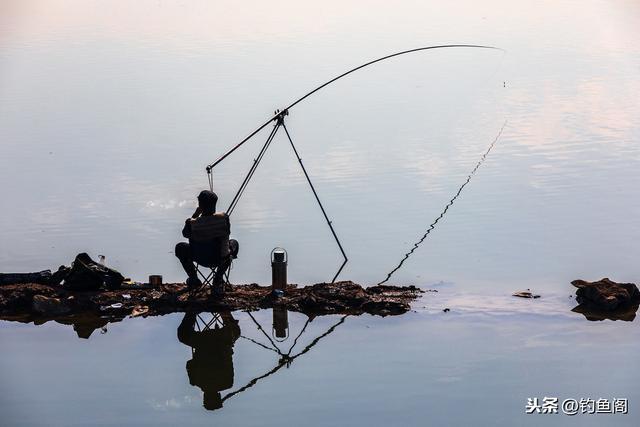 三米九鱼竿多少钱