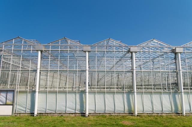 连栋温室大棚助力新农业发展 温室大棚专用PC阳光板多少钱