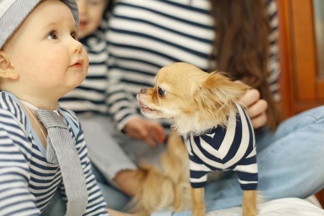 妈妈不舍宠物猫,2岁宝宝给猫咬出血,宠物与孩子如何兼得?