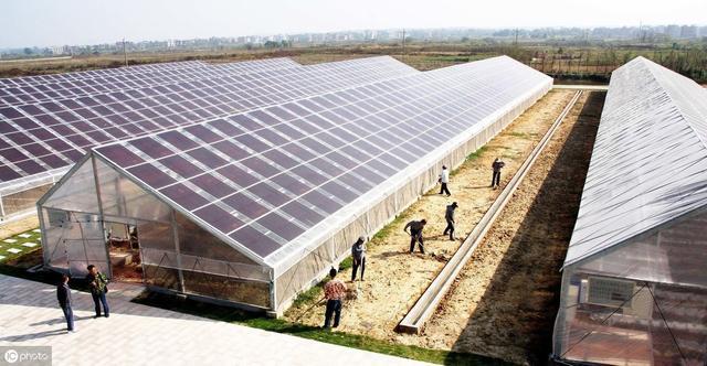 高端农业设备,一个蔬菜大棚70万元,顶三线城市一套房!