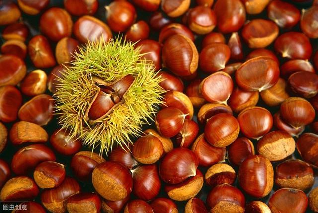 板栗优质高产栽培技术, 高产的种植方法值得参考,建议收藏!
