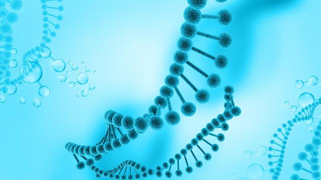 基因突變啥意思