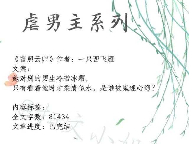 推文:明月珰小说精选,虐男主,渣男作女组合,让人看了还想看