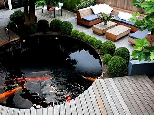 庭院鱼池形状讲风水,看看哪些形状富贵又招财_手机网易网
