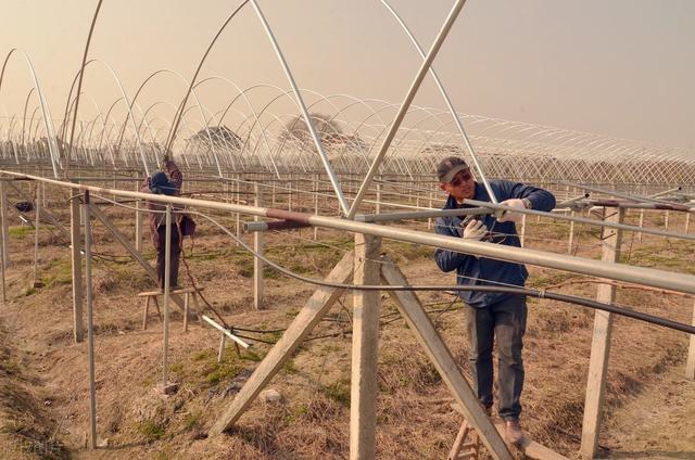 温室大棚CAD图-工农业建筑图纸-沐风网