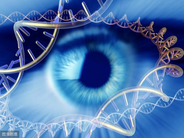 基因有多少类型?分别是什么?基因的分类,有趣的生物学