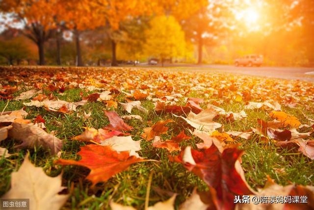 描写秋景的段落