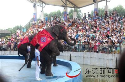 【东莞寮步香市动物园怎么样,好不好】用户评价(图)-美团网