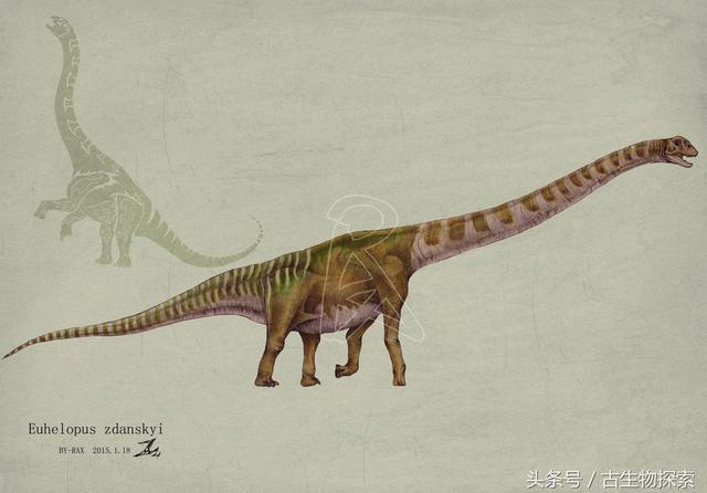 这五种中国恐龙竟然全都是来自同一个省,其中只有一个吃肉