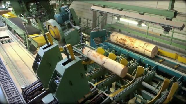 德国制造 木材加工机械 自动剥皮和锯板机 令人敬畏的技术