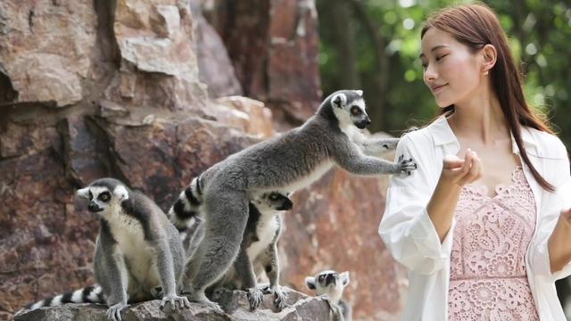 国庆去大连森林动物园玩必须知道的几件事!