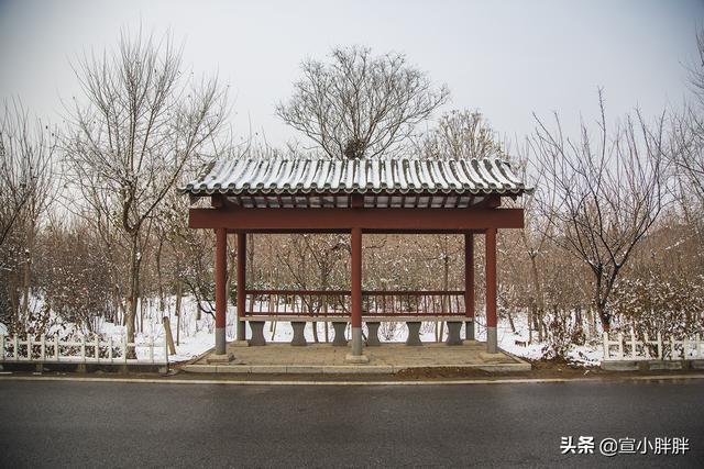 雪后的清西陵,感受不一样的皇家陵墓