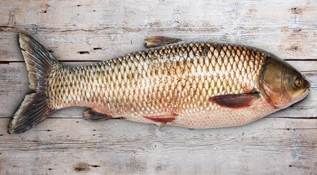 石丙头鱼多少钱一斤