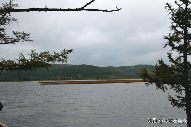 百里杜鹃湖风景图片