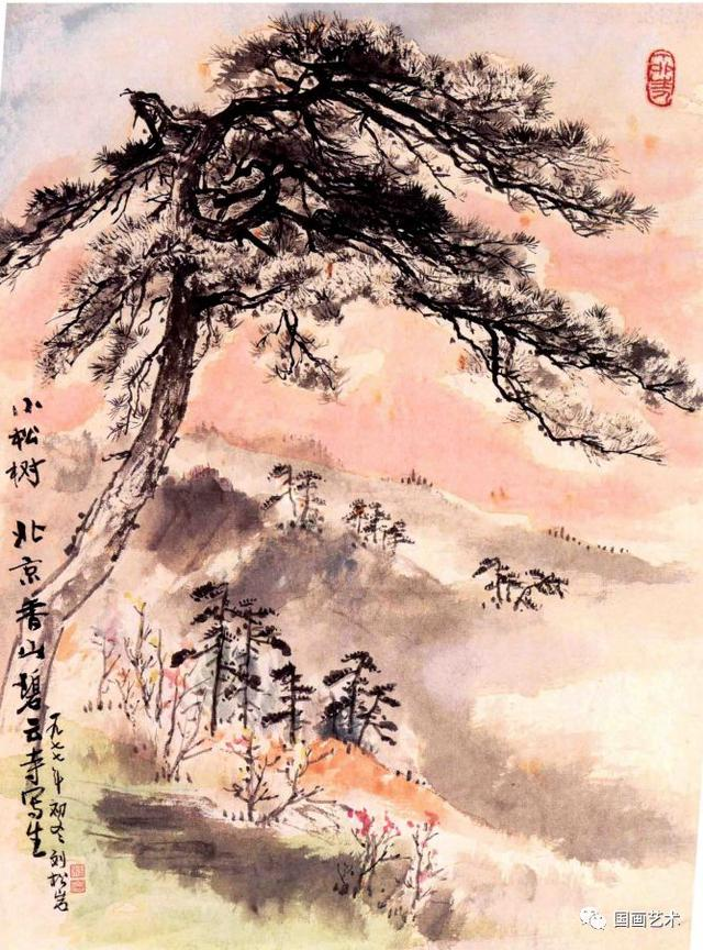 怎么画松树叶子简笔画