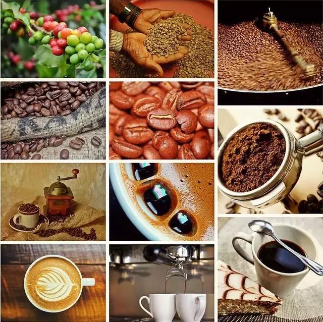 咖啡烘焙-百科