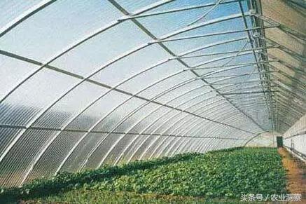 为什么要发展建设连栋温室大棚,建造连栋温室大棚需要多少钱