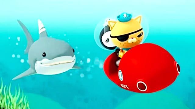 海底小纵队:皮医生帮助大白鲨包扎伤口,大白鲨却把它当大餐!