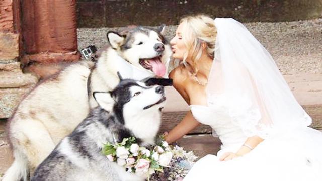 最奇葩的婚礼,英女子向狗求婚,原因居然那么伤感!