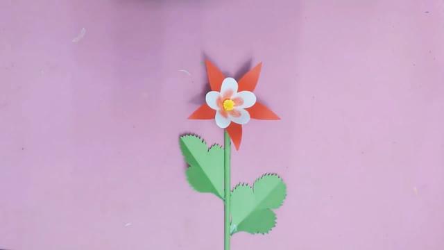 剪纸DIY,教你学会如何剪纸制作漂亮的五角星纸花,非常有创意