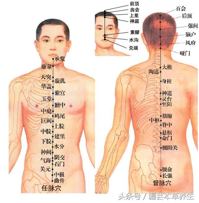 建议收藏,身体各个器官疼痛对照表