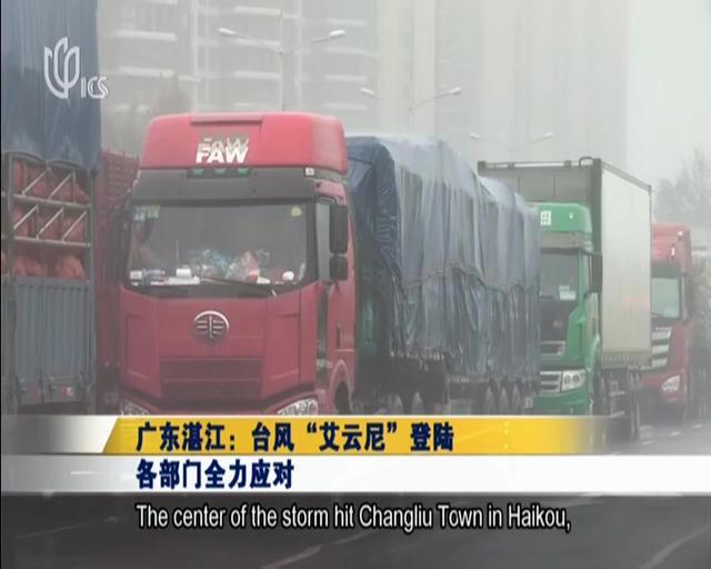 湛江台风统计图表