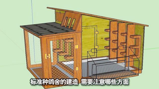 豪华鸽棚设计图一组--中国信鸽信息网相册