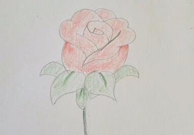玫瑰花简笔画,简单的玫瑰花简笔画教程图 - 高光网