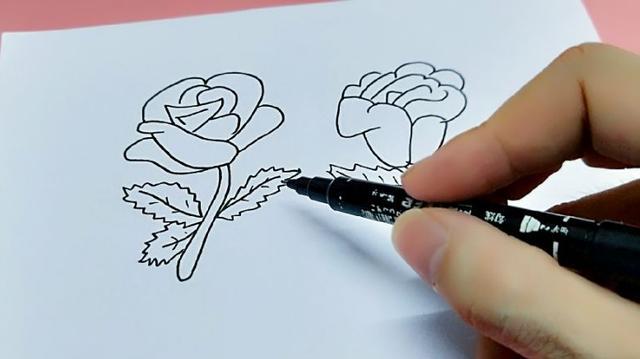 每天学一幅简笔画--玫瑰花简笔画的画法步骤教程及图片大全
