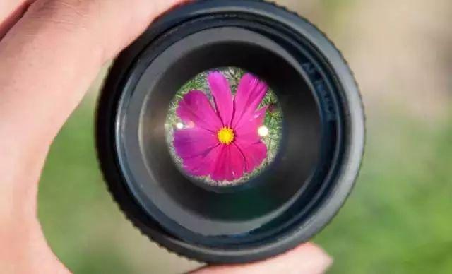 教你用微距镜头拍出特色人像- 豆丁网