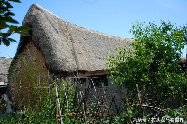 威海海草房,胶东半岛的特色民居,宛如童话世界