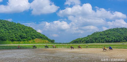 外地人到宜昌旅游都去三峽大壩,而本地人更偏愛這座草原! 宜昌旅游 第3張
