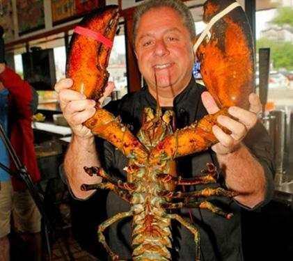 世界上最长寿的龙虾,活了132岁,政府为它发免死金牌