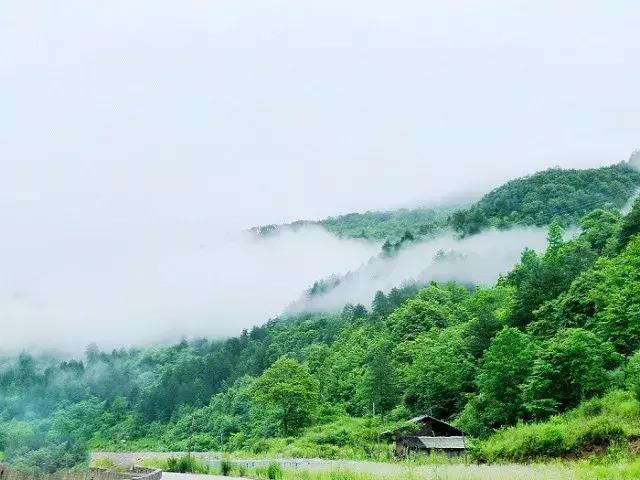 西安自驾上坝河国家森林公园