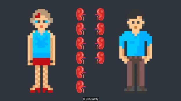 女性生殖系统解剖与生理