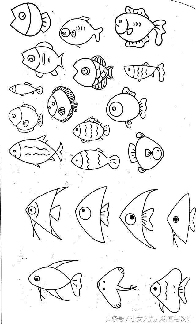 简笔画鱼 各种各样鱼的简笔画图片大全_儿童画教程_学画画_我...