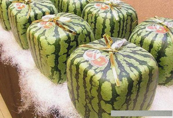 10个世界上常见的昂贵水果,最后一个,绝对是为土豪..._网易新闻