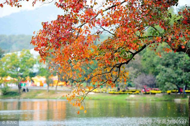 秋天的诗句有哪些 描写秋天景色优美古诗