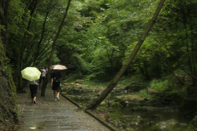 金丝峡国家森林公园详细信息-爱玩旅游网