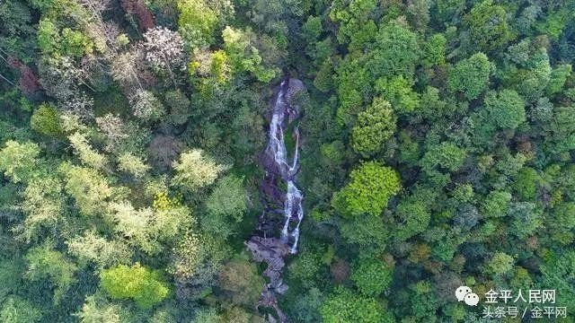 「发现」云南金平的这些原始仙境,是溯溪的绝佳去处!