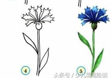 简笔画好看的花朵_搜狗指南